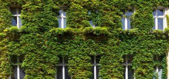 Los materiales de construcción sostenibles reducen el impacto ambiental de los edificios