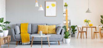 consejos decorar plantas00