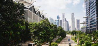 avenida verde ciudad sostenible